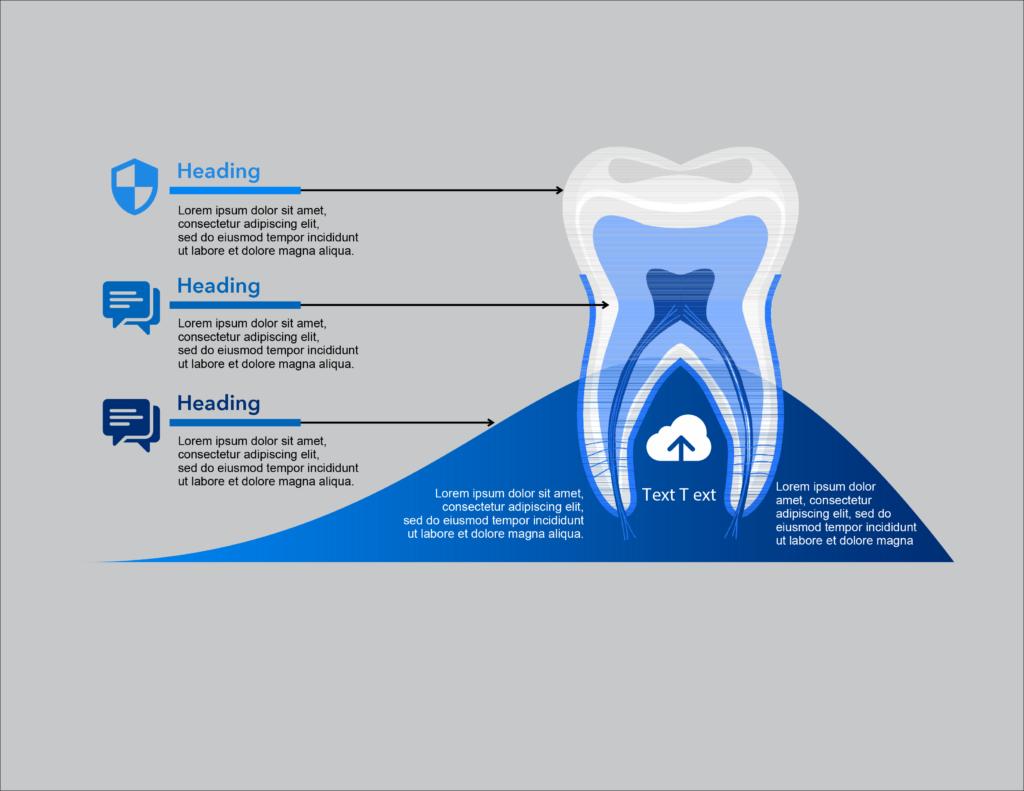 Dental Health Graphics, BidsandBeyond